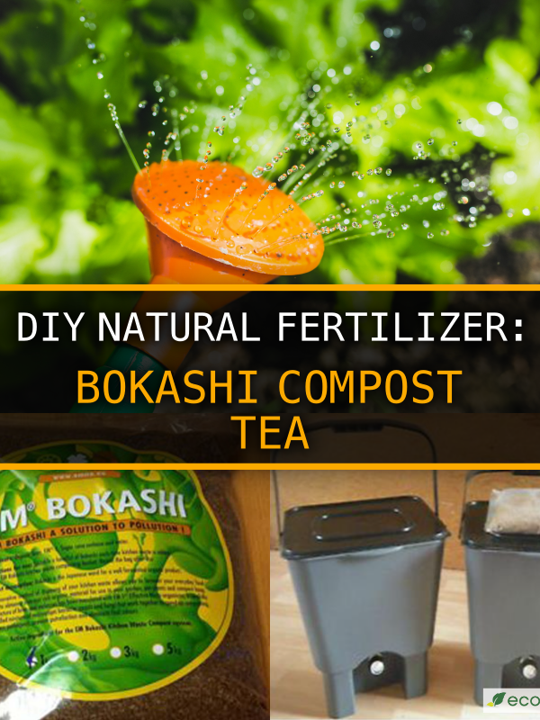 Bokashi Compost Tea – DIY Natural Fertilizer