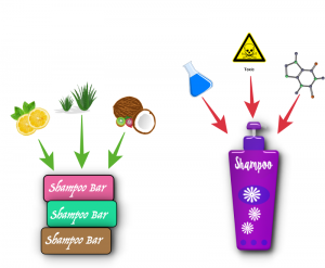 Ecostore shampoo bars