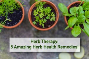 Home Health Remedies Using Garden Herbs