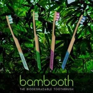 Bambooth Bamboo Toothbrush