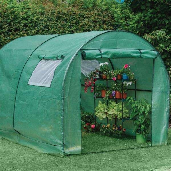 polytunnel gardening